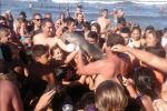 Tolto dall'acqua per un selfie, delfino muore poco dopo: è bufera sul web