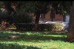 Intitolato al direttore d'orchestra palermitano Mannino il giardino di via Cesareo - Video