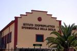Istituto Zooprofilattico, nasce la Biobanca del Mediterraneo