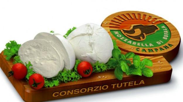 campana dop, mozzarella di bufala, produzione costante, Sicilia, Economia