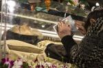 Padre Pio, Capitale blindata per le spoglie a San Pietro - Foto