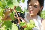 Coldiretti, cresce il numero dei giovani lavoratori agricoli: +12%