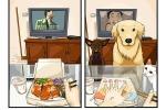Come cambia la vostra vita prendendo un cane? Queste immagini ve lo dimostreranno - Foto
