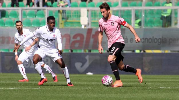 Bologna, Calcio, Palermo, rosanero, SERIE A, Palermo, Qui Palermo