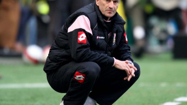 allenatore, Calcio, Palermo, rosanero, SERIE A, Palermo, Calcio