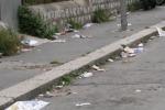 Palermo, marciapiedi ricoperti di rifiuti e cartacce a Falsomiele - Video
