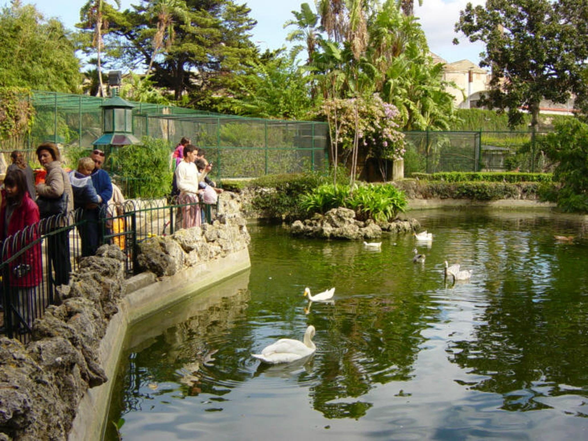 Villa D Orleans Animali