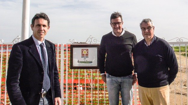 Foro Italico, parco della salute, Palermo, Cronaca