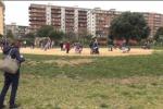 Raccolta fondi per la videosorveglianza, il parco Uditore ringrazia i cittadini - Video