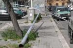 Forte vento a Palermo, pali dell'illuminazione e alberi caduti per strada - Video