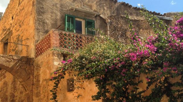 riconoscimento, Sambuca, Agrigento, Cultura