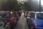 Partono i lavori, Parco della Favorita subito nel caos: auto incolonnate per ore - Foto