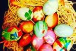 Pasqua a Palermo, il primo Gdscontest sfiora le 500 foto: ecco alcune tra le più belle