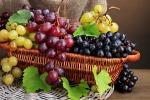 Al via la 30esima edizione della sagra dell'uva a Roccazzo