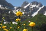 Vacanze di primavera: dai vaccini al cibo, tutti i consigli