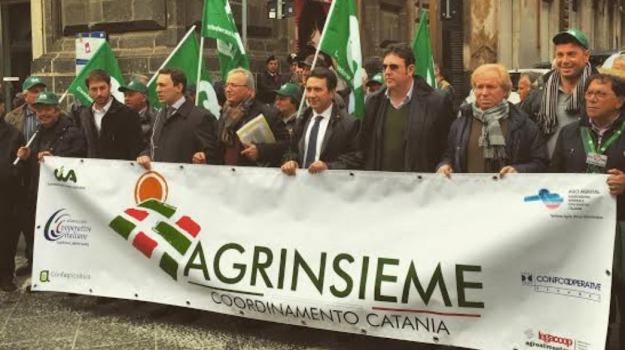 catania, ciminiere, Catania, Economia