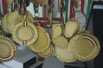 Alcamo, tredici medaglie per le ginnaste
