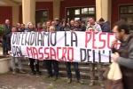 Palermo, pescatori in protesta davanti l'assessorato all'Agricoltura