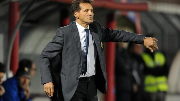 allenatore, Calcio, Palermo, SERIE A, Walter Novellino, Palermo, Calcio