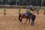 Equitazione, partite a Palermo le gare di salto ostacoli - Video