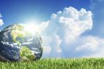 L'iniziativa: piantare un albero per ogni abitante della Terra