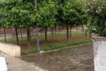 Spazi danneggiati e rifiuti: la villa di via Cartagine nel degrado