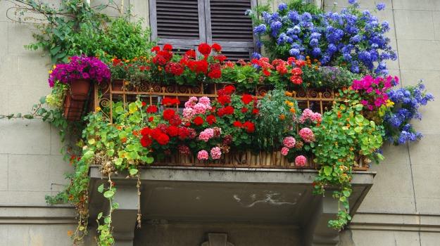 fiori, Enna, Cultura