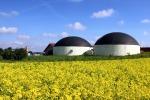 Energia dagli scarti agroalimentari: in Sicilia terzo impianto biogas