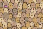 C'è un intruso tra i criceti, il nuovo rompicapo social arriva da Instagram