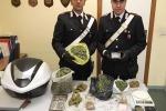 Palermo, scoperta centrale della droga all'Arenella: un arresto