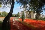 """San Luca, al via i lavori per il """"Giardino della legalità"""""""