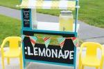 Usa, bimba diventa ricca con una limonata: ora vale 60mila dollari