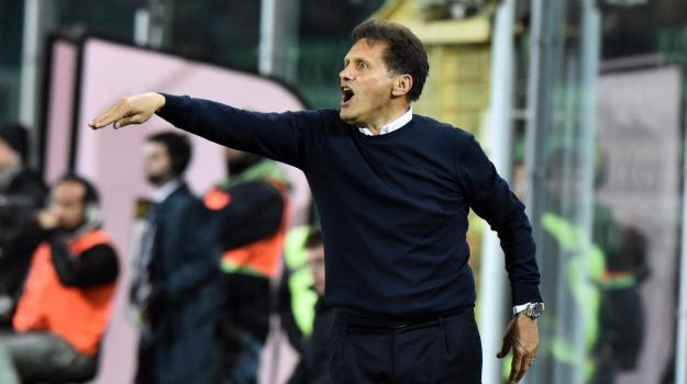 Calcio, lazio, Palermo, salvezza, seria, Davide Ballardini, Walter Novellino, Palermo, Calcio