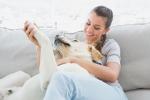 Cinque geni fanno del cane il miglior amico dell'uomo: la risposta nel Dna