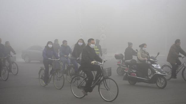 allarme, inquinamento, Sicilia, Società