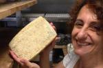 Digeribile, sano e in crescita: in Sicilia la rivincita del latte di capra