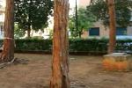 Palermo, vandali di nuovo in azione a Villa Sperlinga: il video dei danni