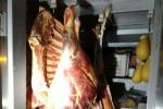 Macelleria clandestina nell'Ennese, arrestato un allevatore di Tortorici