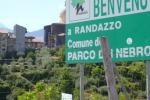 Nebrodi, dietro un farmaco la mafia delle macellazioni clandestine