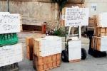 Selinunte, ztl: avvisi anti multa ai turisti
