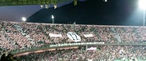 Palermo, gli abbonati non pagheranno il biglietto per i play-off