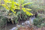 Ragusa, sversamento di greggio nel Mongillè: attivate le procedure
