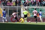 Palermo, così si fa: Samp battuta 2-0. La salvezza adesso non è più un miraggio
