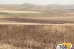 Incendio in alcuni campi di Paceco confiscati alla mafia