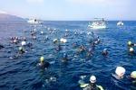 """Da Levanzo a Favignana a nuoto, torna la """"Egadi Swim Race"""""""