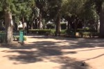 Vandali al Giardino Inglese di Palermo, danneggiata una statua