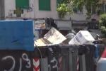 """Rifiuti a Palermo, la Rap: """"Per l'estate un turno di raccolta in più"""""""