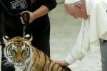 Giubileo dei circensi, il Papa temerario accarezza una tigre - Foto