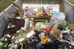 Terra e rifiuti: Reset in azione in via Messina Marine - Foto