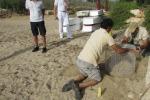 Tartaruga Caretta caretta depone le uova sulla spiaggia di Lampedusa